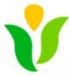 Green&Organic